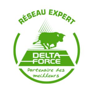Logo Delta-Force
